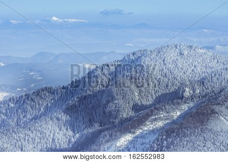 Winter Landscape Of The Mountains And Trees Covered By Snow In B