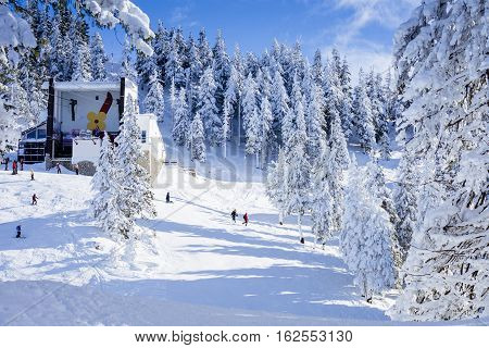 Poiana Brasov Romania - January 24 2016: Winter snowy landscape with people skiing on the ski in Poiana Brasov Romania