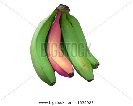 Stand Out Banana 2