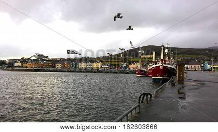 Dingle Port, Dingle Peninsula, County Kerry, Ireland