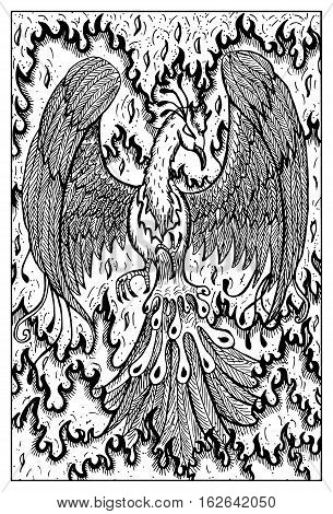 Phoenix in flame. Bird in fire. Fantasy magic creatures collection. Hand drawn vector illustration. Engraved line art drawing, graphic mythical doodle. Template for card game, poster