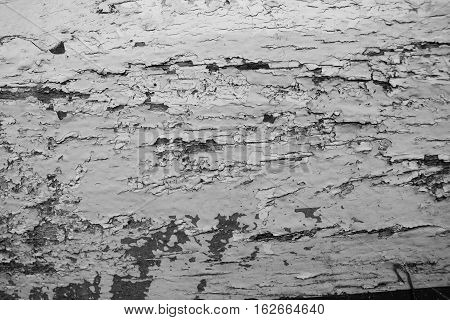 Black and white distressed wooden painted texture. Monochrome texture with obsolete paint stucco. Painted distressed surface closeup. Cracked paint close-up image. Weathered wooden texture background