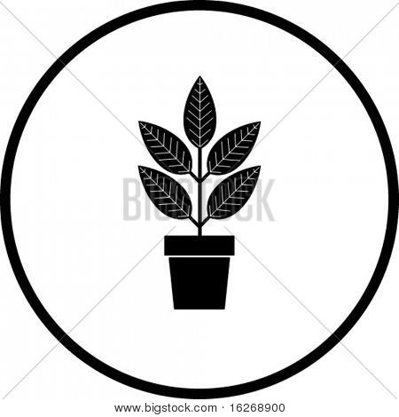 plant symbol