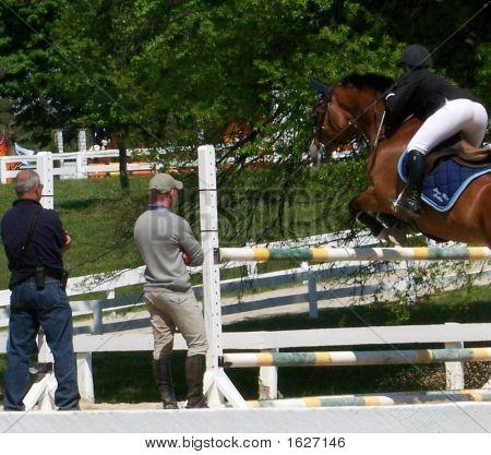 Western Jumper