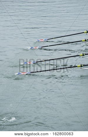 An up close view of four rowing ores as the glide through the water.