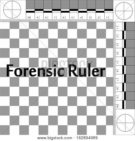 CSI Forensic Ruler, ruler forensic mobile lab for photographing evidence at the crime scene, vector true scale