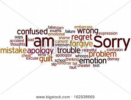I Am Sorry, Word Cloud Concept 8