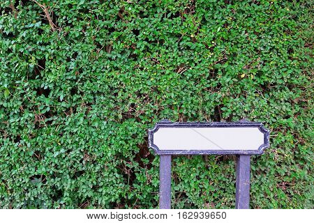 empty blank white wooden signpost with natural green leaves garden park background.