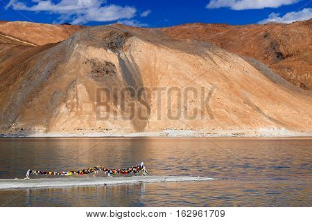 Mountains and Pangong tso (Lake). It is huge lake in Ladakh with snow peaks and blue sky in background it extends from India to Tibet. Leh Ladakh Jammu and Kashmir India