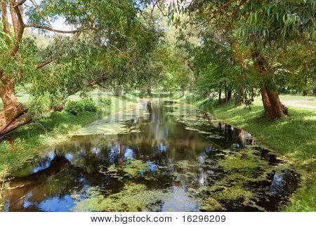Fantastic pond in manor of Russian artist Repin