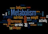 Metabolism, Word Cloud Concept 5 poster