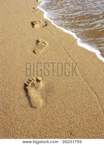 Footprints along the seashore