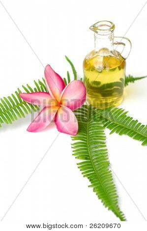 Aromatic oil, plumeria and fern leaf