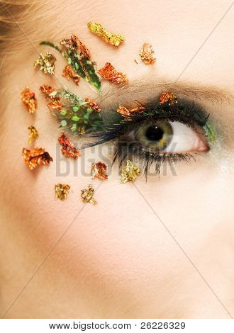 eye with beautiful make-up