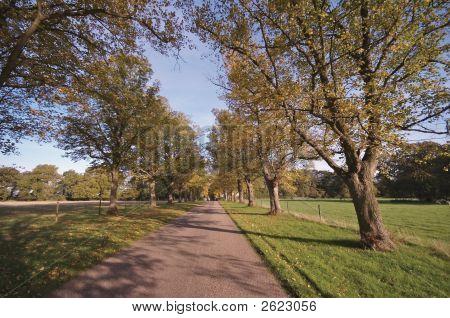 Baddesley Clinton Estate