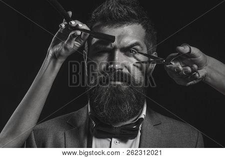 poster of Handsome Bearded Man With Long Beard Moustache. Barber Scissors. Long Beard. Bearded Man, Lush Beard