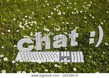 Chat and modern keyboard on green grass in garden