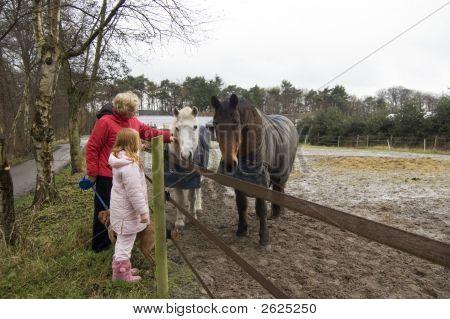 Grandparent And Grandchild Petting The Horses