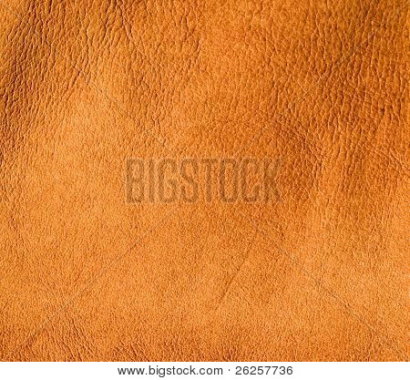 burned skin leather texture