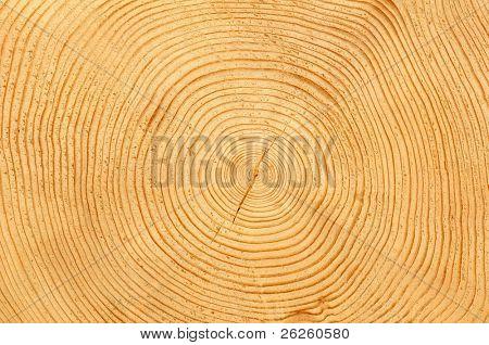 Stück Holz Holz natürlichen Hintergrund