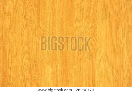 maple tree wood textured background
