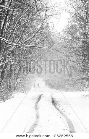 Schneefälle auf der Landstraße