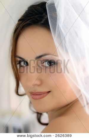 Pretty Bride With Veil