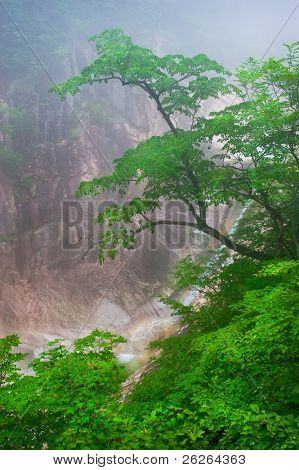 Waterfall foggy mountain view at Seoraksan National Park, South korea