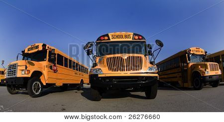 School busses sit in a parking lot
