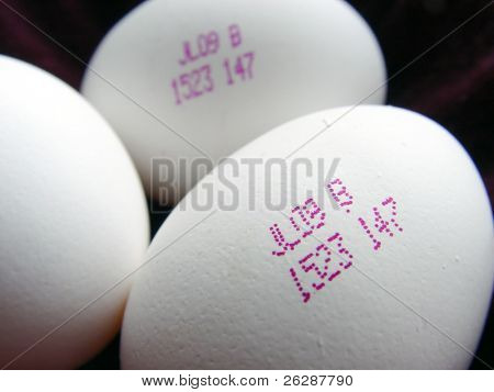Closeup of eggs of the future with serial number on the eggs
