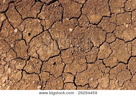 Dried out soil texture
