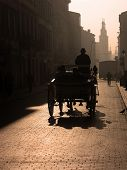 picture of hackney  - Cabman driving the tourists in a carriage in the morning - JPG
