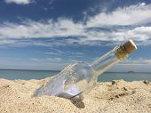 Message in the bottle washed ashore