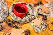 Warming Beverage. Mug Cozy Aromatic Beverage Scarf And Kepi. Hot Drink For Autumnal Walk. Mug Of Tea poster