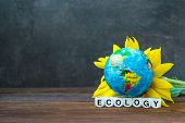 The Earth Globe Ball Against Yellow Sunflower And The Word Ecology. Ecology Problem, Environmental P poster