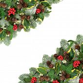 Christmas and winter natural background border with holly berries, snow covered spruce pine, ivy, pi poster