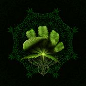 3d Rendering Idea Of A Cannabis Leaf Making A Fist On A Mandala. poster