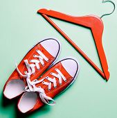 Red Gumshoes And Hanger On The Green Background poster