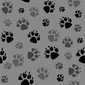 Animal Black Foots And Wildlife Animal Mammal Steps, Pet Traces. Animal Foots Silhouette Steps Anima poster