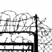 stock photo of stockade  - wired fence with barbed wires - JPG