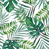 Hand Painted Watercolor Palm And Monstera Leaves Seamless Pattern On White Background. Tropical Back poster