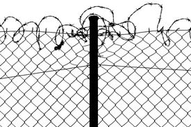 picture of barbed wire fence  - fence with barbed wire - JPG