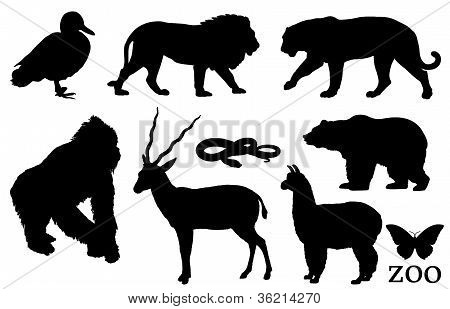 Zoo animal silhouettes