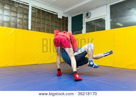 wrestlers Sambo