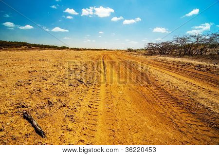 A Dirt Road in the Desert