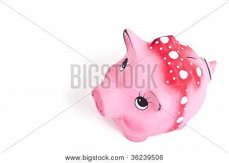 Above Side Shot Of The Cute Piggy Ceramics Moneybox On White Background