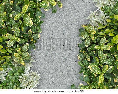 Top View Of Stone Path In Garden