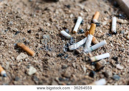 Cigarette Butts In Ashtray Sand Truck