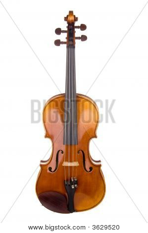 Violin Front View