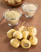 foto of ginseng  - Fresh maca roots or Peruvian ginseng  - JPG